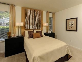 Furnished 1-Bedroom Apartment at Hickory Ridge Rd & Martin Rd Columbia