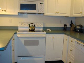 Furnished 1-Bedroom Apartment at Flagg St & Banks St Cambridge