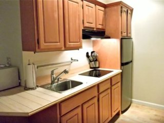 Furnished Studio Apartment at Massachusetts Ave & Tyler Ct Cambridge