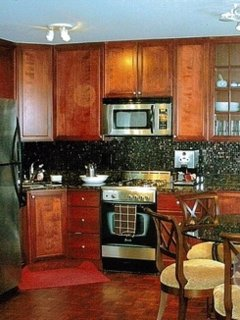 Furnished 1-Bedroom Condo at N Lake Shore Dr & E Schiller St Chicago