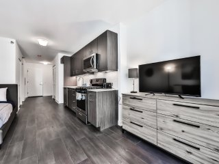Furnished Studio Apartment at W Randolph St & N State St Chicago