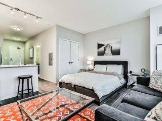 Furnished Studio Apartment at W Adams St & S Desplaines St Chicago