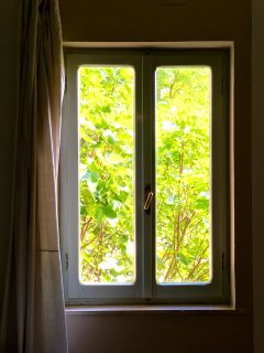 green view from the window bedroom