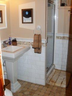 Basement bathroom (steamroom)