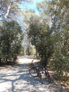 2 vélos à disposition pour faire les courses au village ou de belles balades dans la provence