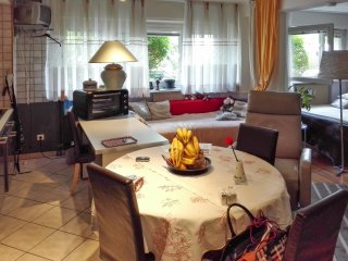 Studio flat with garden and city view, Estrasburgo