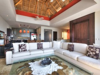 palapa roof living area