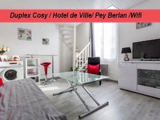 Duplex Hyper Centre, Rue Bouffard Bordeaux *****