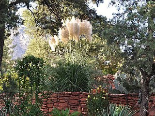 1 Bedroom - AZ SUN SEDONA, WEST SEDONA