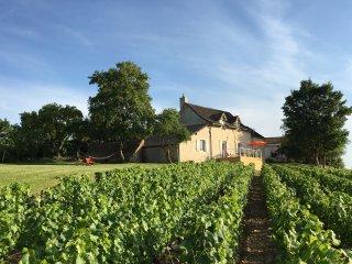 Les Maisons de Chamirey, séjour au coeur des vignes en Bourgogne du Sud