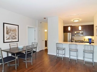 MODERN AND FURNISHED 2 BEDROOM APARTMENT IN CHICAGO, Chicago