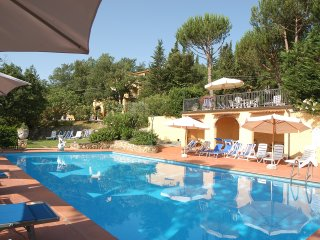 Apartment in tuscany with pool - Chianti Terreno