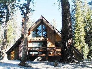 Ski in/Ski out Slope side cabin - Chalet #17