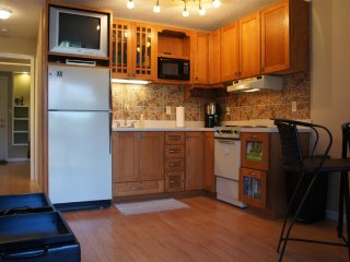 Voted Best 1/1 Lake Front Condo in Osage Beach 3 Seasons Enclosed Deck Free Wifi
