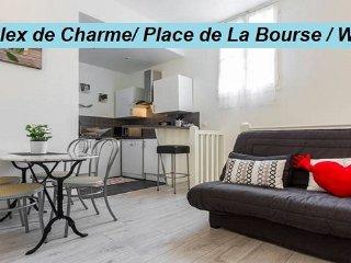 Duplex de Charme Bordeaux Hyper Centre rue St Rémi