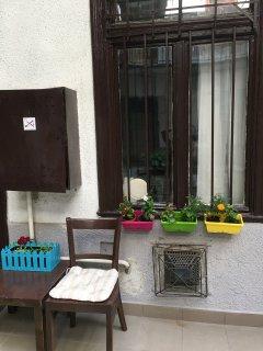 The mini 'garden' :)