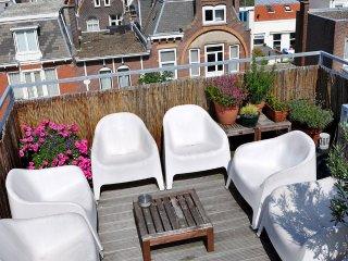 Spacious Studio Apartment with Roof Terrace Views, La Haya
