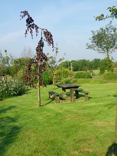 Seating area within the farmhouse garden