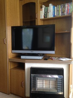 Photo of television and gas fire
