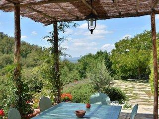 Torre di Cancelli - luxury villa in Chianti!