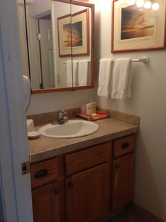 Wash area of guest bath. Conveniently separated from the shower.