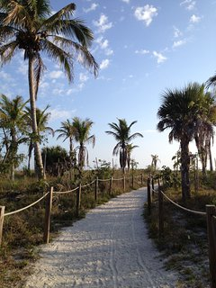 A sandy footpath past palms and a pair of nesting ospreys leads to the beach.