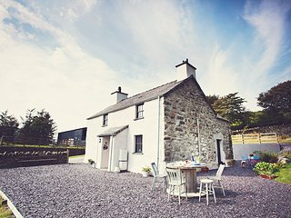 42841 Cottage in Betws-y-Coed, Bala
