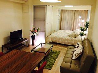 Osaka,Dotonbori,Sinsaibashi,Spacious room,wif
