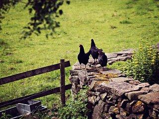 42844 Barn in Crickhowell, Ebbw Vale