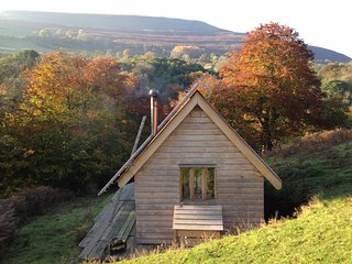 42964 Log Cabin in Crickhowell, Llanfoist