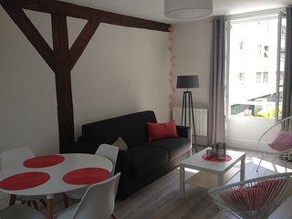 Joli appartement de charme plein centre ville, Fontainebleau