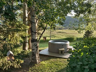 Delightful 4 Bedroom Home- Snowshoe Chalet, Steamboat Springs