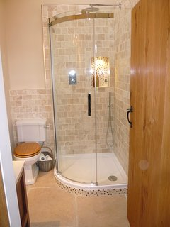 Contemporary ensuite shower room attached to sitting room