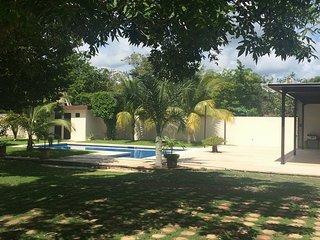 Estudio en Puerto Morelos