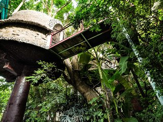 Tropical Paradise Tree House