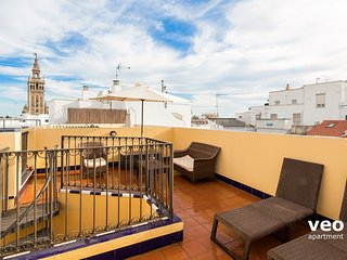 Pajaritos 2 Terrace. Duplex with views of Giralda