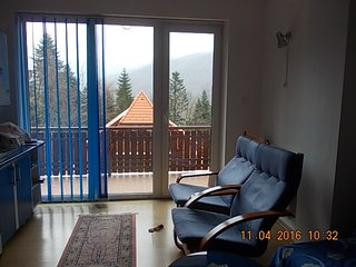 Luxury 2 room flat close to Peles royal castle, Sinaia