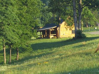 Amazing log cabin on 200 acres overlooking private, Nellysford