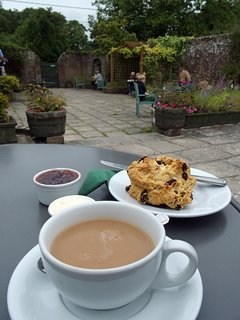 Take the opportunity to try a Dorset cream tea - this at Moreton Tea Rooms (room for dogs outside)