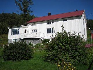 Engen Gård, Svartisen