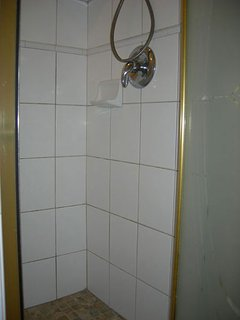 upgraded Stall shower in the hall bathroom