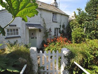 TRIVS Cottage in Port Isaac, Bodmin