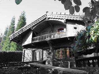 Les greniers du Mont-blanc, Passy