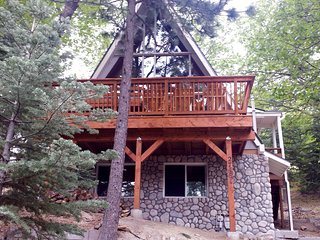 Nordic Lodge - includes beach club passes!, Lake Arrowhead