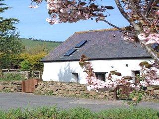 WSAUN Cottage in Saunton, Woolacombe