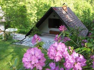 ISKA retreat, Liubliana