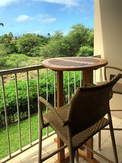 Bistro height chairs--see the view, not the railing!