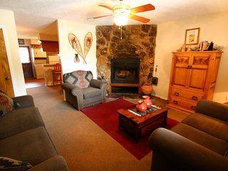 Valley Condos #124 - WiFi, Fireplace-Wood, Washer/Dryer, Community Hot Tubs, Playground, Creek, Red River
