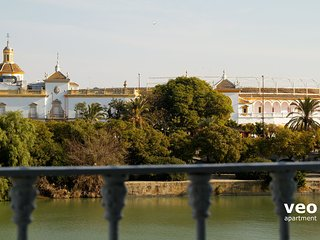 View of the Maestranza bullring from the living room.