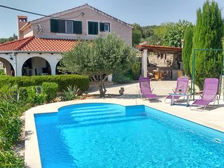 Charming Villa Nika with the pool, Skrip